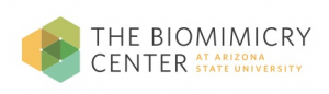 The Biomimicry Center Logo