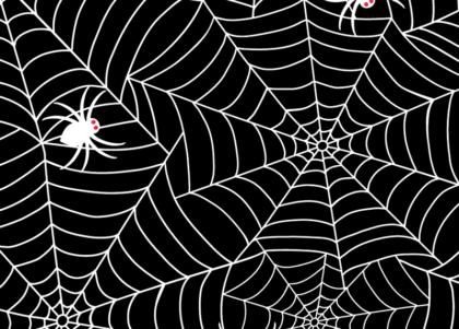 Spiderweb graphic