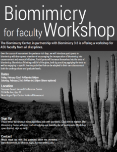 Biomimicry Workshop for faculty flier