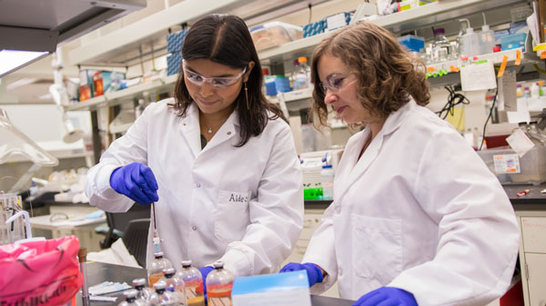 A student and faculty mentor work together in a lab.