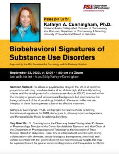 Seminar: Biobehavioral signatures of substance use disorders